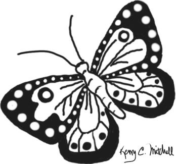 Butterfly-08