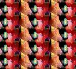 Jill's Fabric