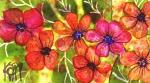 Maui Flowers