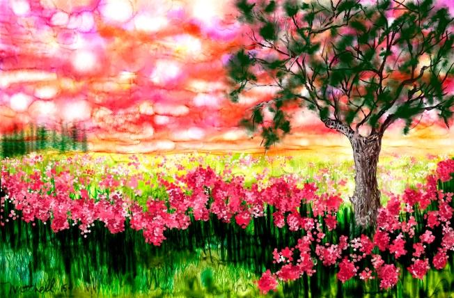 Summer Poppies